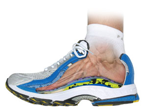 Orthotics Running Shoea